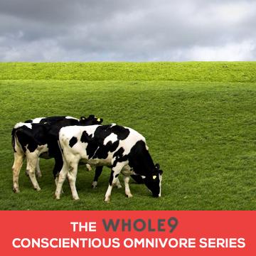 Omnivore Series Template