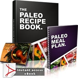 PALEO RECIPE BOOK PDF DOWNLOAD
