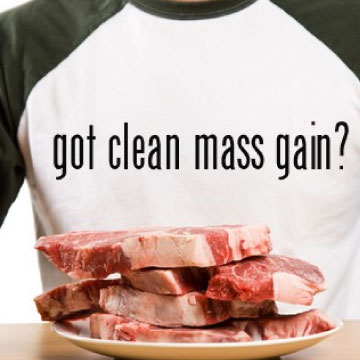 clean-mass-gain