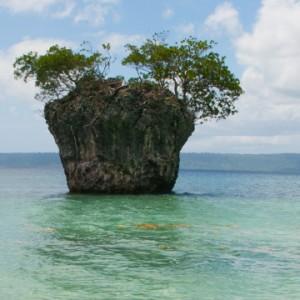 Good-Food-Island2