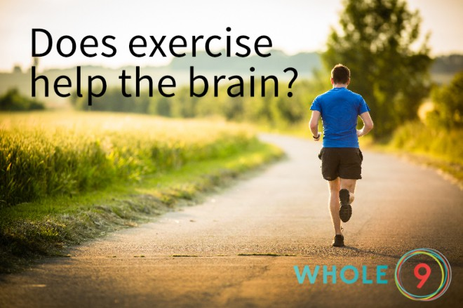Does exercise help the brain? via Whole9life.com